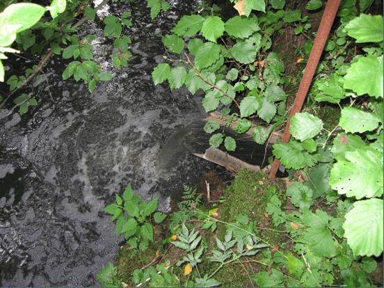 Выпуск сточных вод в мелиоративную канаву