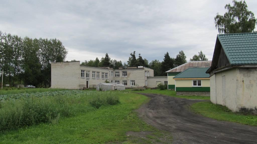 Обследование системы канализования специальной школы-интерната в микрорайоне Лесобиржа города Кингисеппа Ленинградской области.